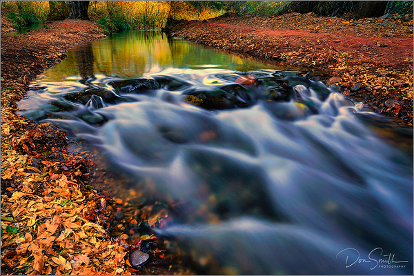 Fall Leaves and Oak Creek, Sedona, Arizona