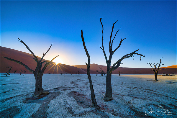Deadvlei Sunrise and Camel Thorn Trees, Namibia