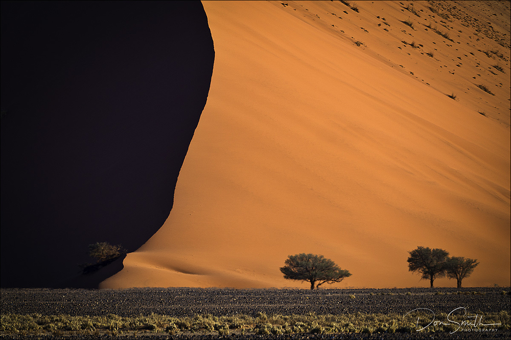 Namibia Photo Workshop - Safari and Landscape