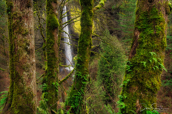 Latourell Fall, Columbia River Gorge Workshop