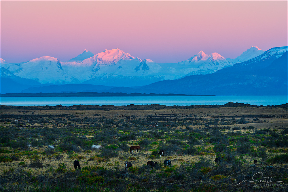 Dawn Light on Castle Range, Patagonia, Argentina