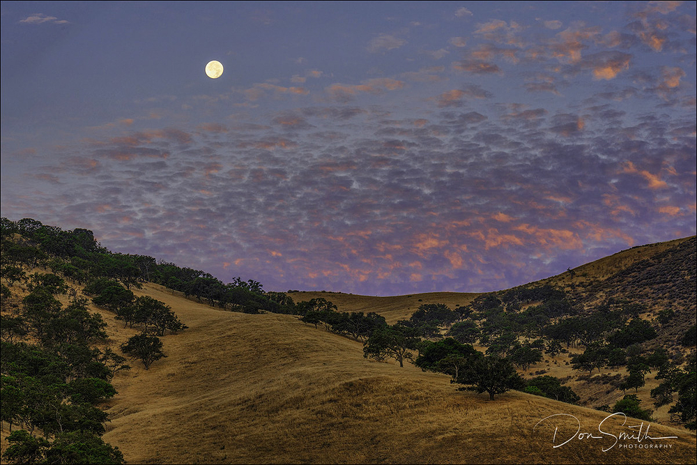 Buck Moon Over San Benito County at Dawn