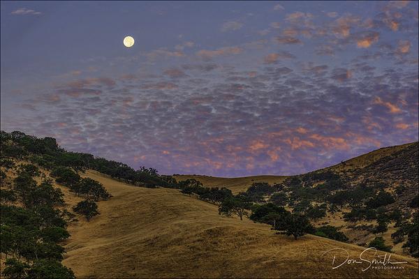 Buck Moon Over San Benito County at Dawn