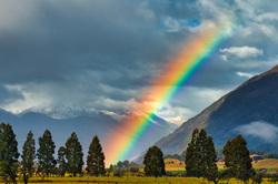 Rainbow Over Paradise, South Island, New Zealand
