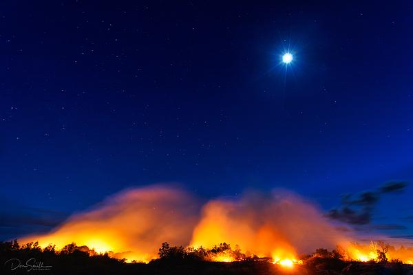 Lava Creep, Hilo Hawaii