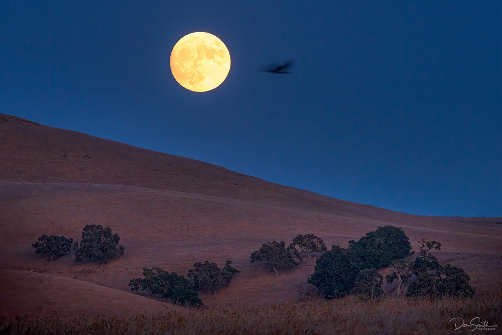 Harvest Moon Over Diablo Range, California