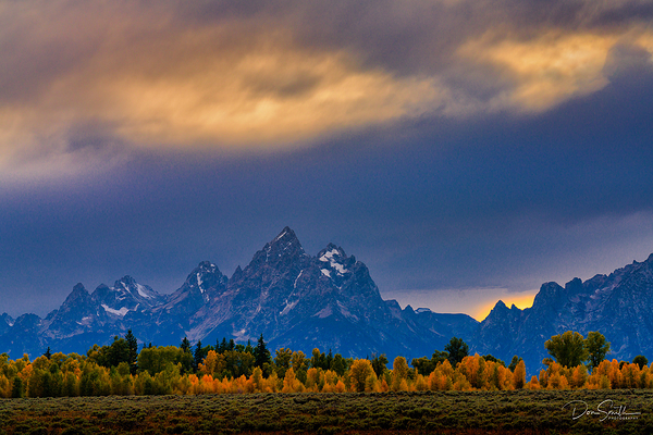 Sunset Sky and Aspens, Grand Teton National Park