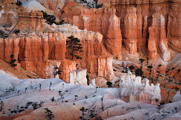 White Hoodoos, Bryce Canyon National Park