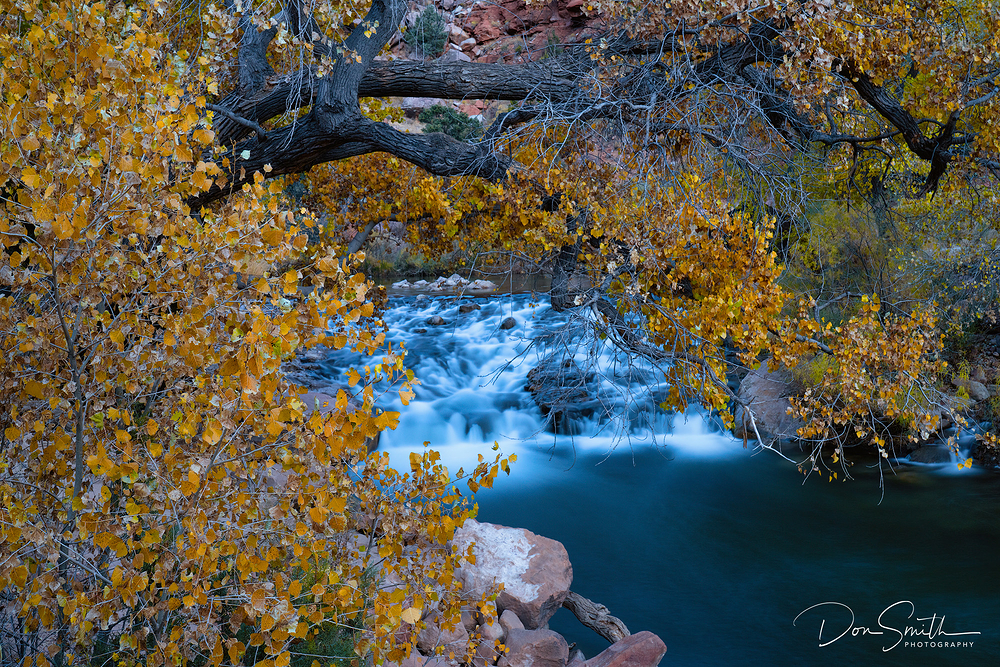 Virgin River in Autumn, Zion National Park