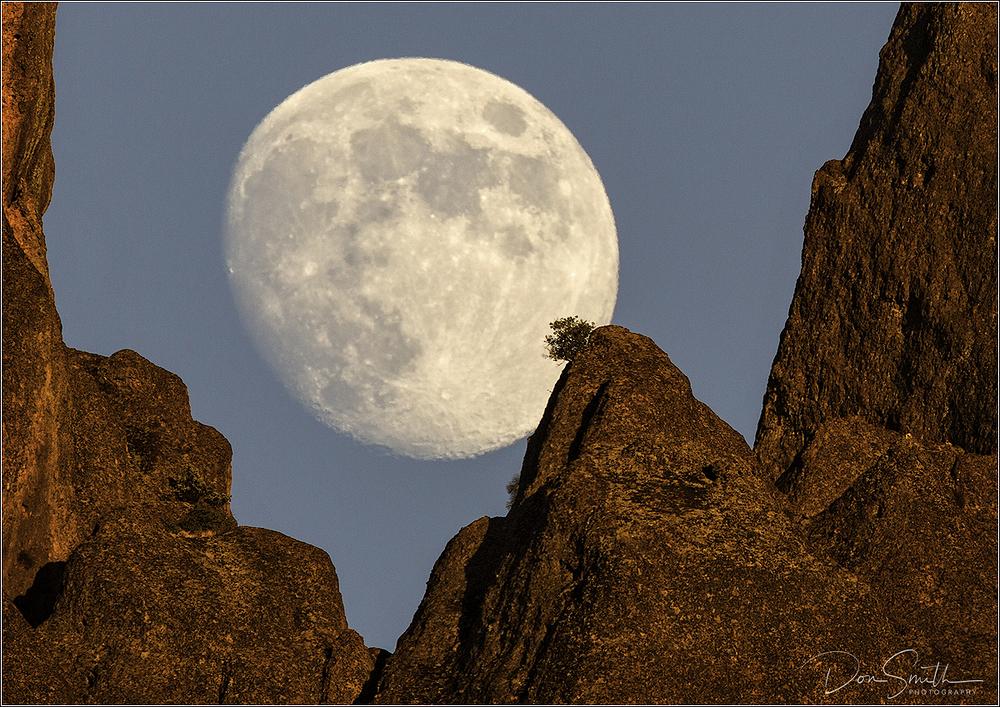 Moonrise Through West Peaks, Pinnacles NP, CA