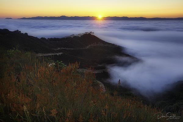 Foggy Morning, Santa Clara Valley, California