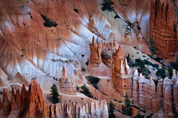 Bryce Canyon, Sony's New 200-600mm, My Thoughts!