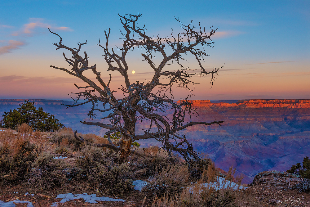 Setting Moon at Sunrise, Grand Canyon NP