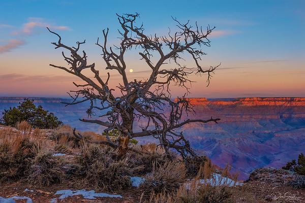 Setting Moon at Sunrise, Grand Canyon NP