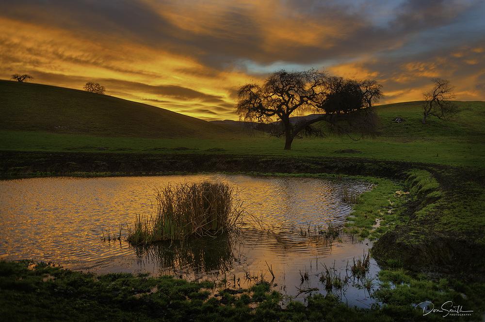 Day Dawns, Santa Clara Valley, Californa