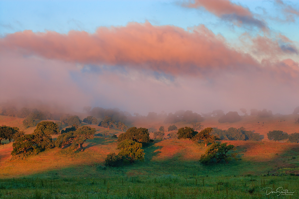 Sunrise Light Over California Coastal Hills