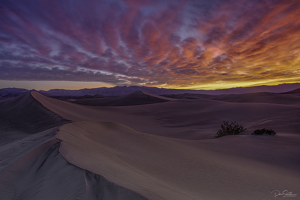 Sunrise, Mesquite Dunes, Death Valley NP