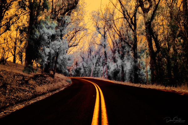 Into the Abyss - Montana de Oro State Park - CA