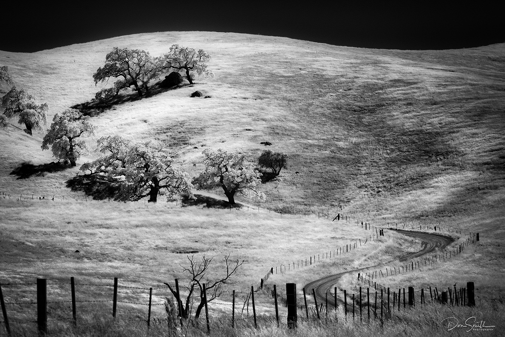 Country Land and Valley Oaks in Infrared