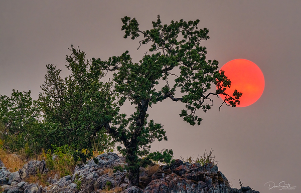 Fires Ravaging California Central Coast