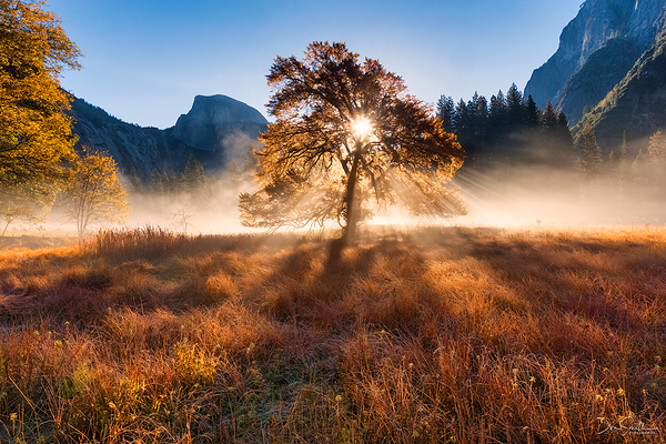 Cook's Meadow, Yosemite National Park