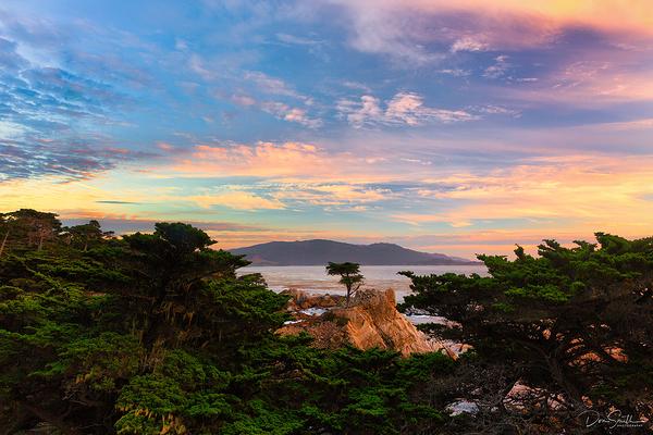 Sunset Sky Over Lone Cypress, Pebble Beach, CA
