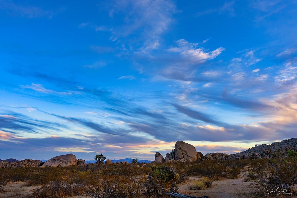 Dawn in Joshua Tree National Park