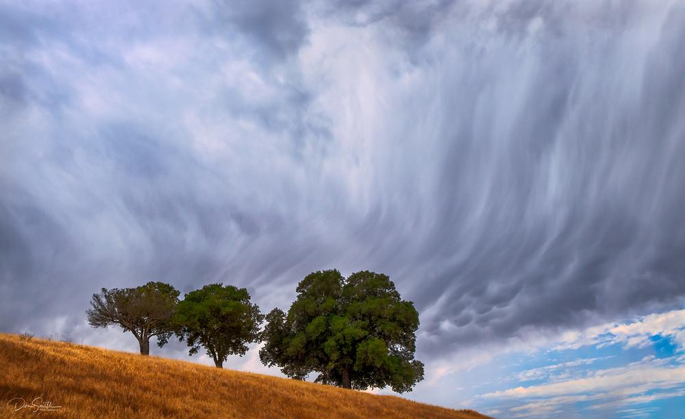 Mammatus Clouds at Base of Cumulonimbus Clouds