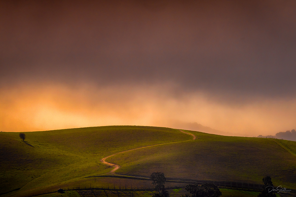 Late Afternoon Storm Light, Central California