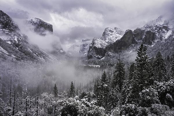 Winter Morning, Yosemite Valley