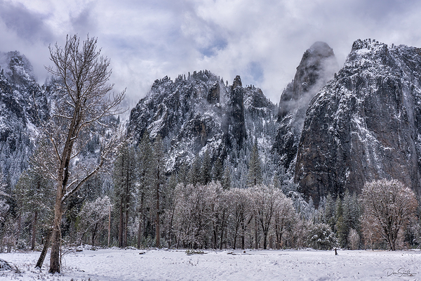 Yosemite Cathedral in Fresh Snow