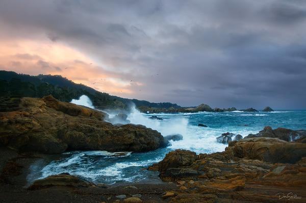 Point Lobos, Carmel-by-the-Sea, California