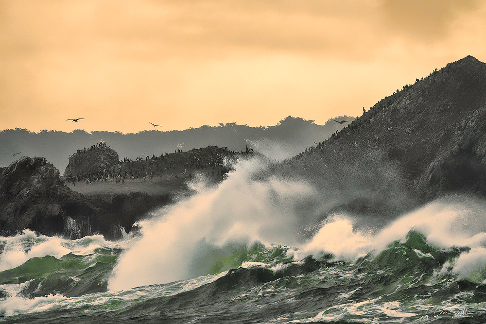 Stormy Sunset, Point Lobos State Reserve