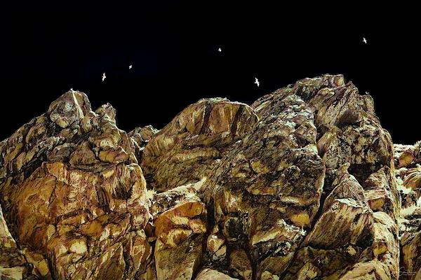 Morro Rock and Gulls, Infrared, Morro Bay, CA