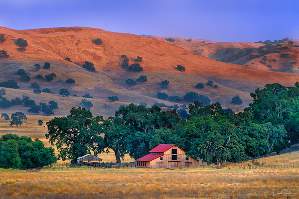 A Summer's Eve in Central California