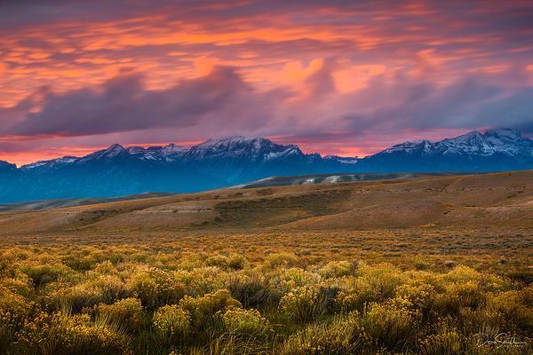 National Elk Refuge, Jackson, Wyoming