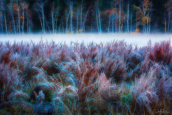 Cold Fall Morning in Yosemite Valley