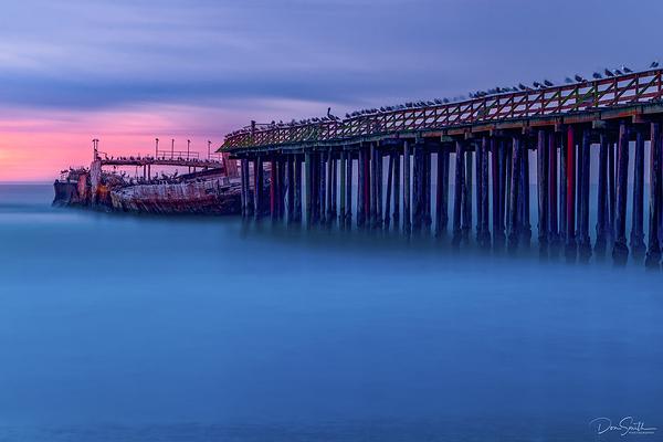SS Palo Alto, Central California