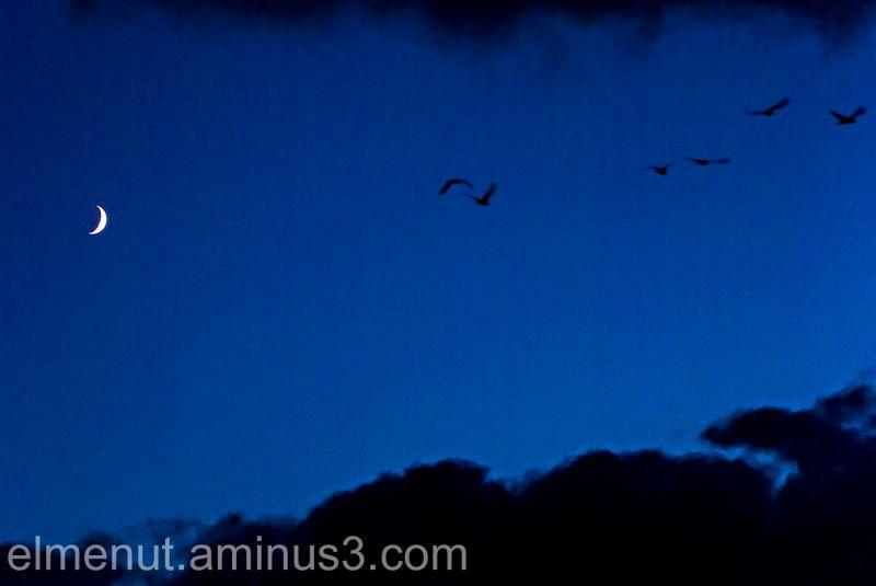 volant lluna