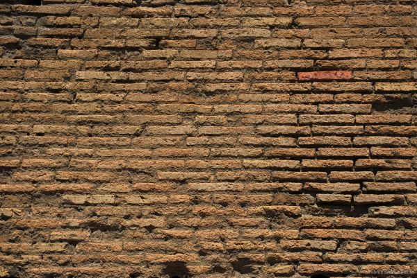 paret creuer coliseum