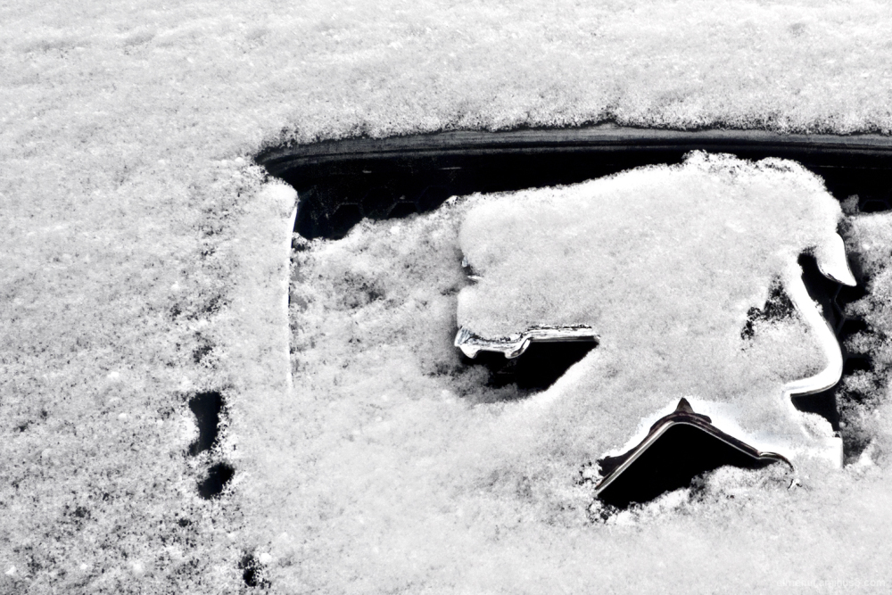 nevada salt lleo neu peugeot