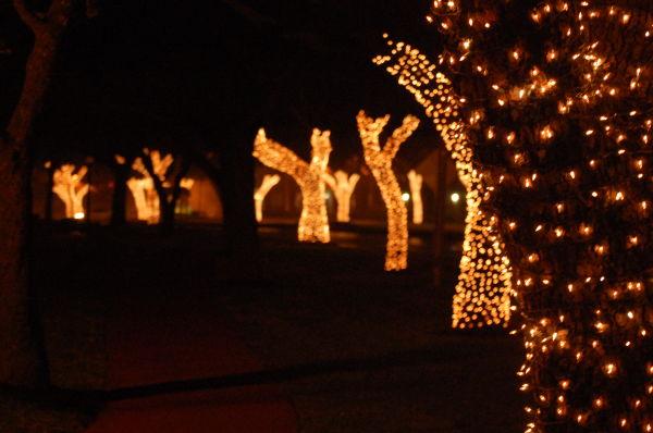 the village lights