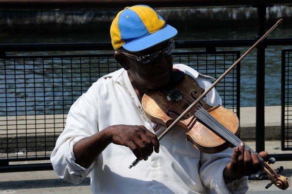 The Musician at Battery Park