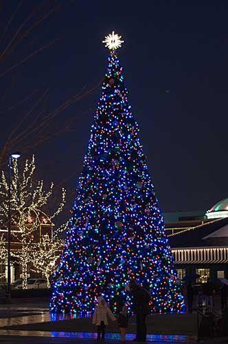 Christmas Tree at the Mall