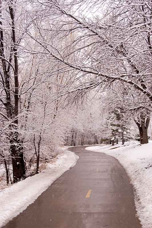 A Fresh Snowfall