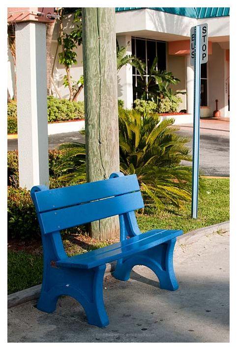 Blue Bus Stop