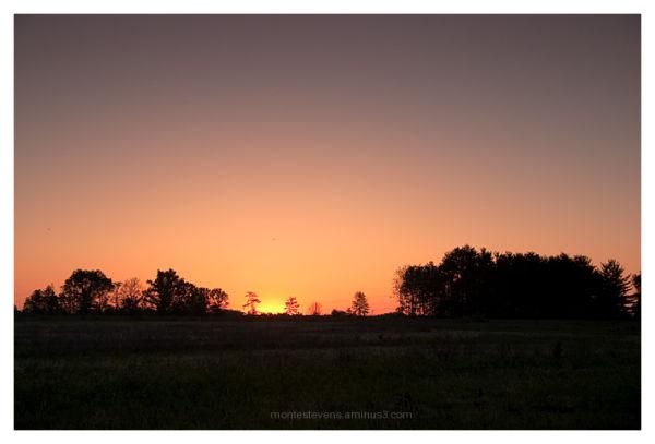 Sunrise in open field