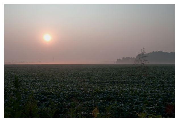Hazy sunrise near Gahanna, Ohio.