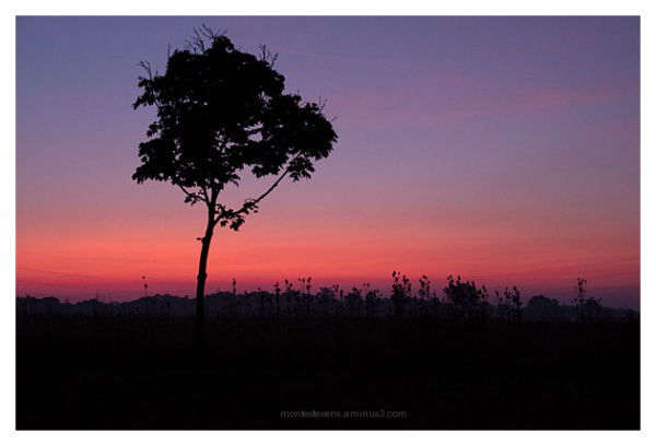 Morning sunrise new New Albany, Ohio.