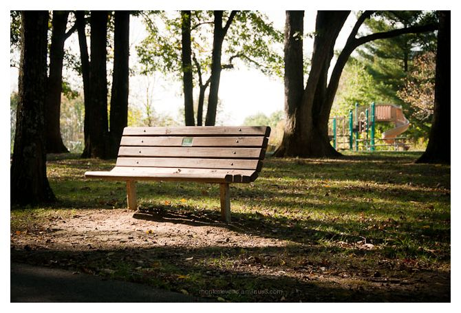 Sunday Morning Bench